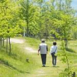 三井住友・げんきシニアライフ・オープンの評価・解説!最優秀ファンド?