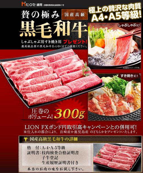 fx-hirose-yuutai3