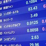 上場インデックスファンド海外新興国株式(1681)の評価!利回りは?