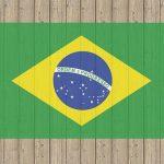 HSBCブラジルオープンの評価・評判!投資して大丈夫?